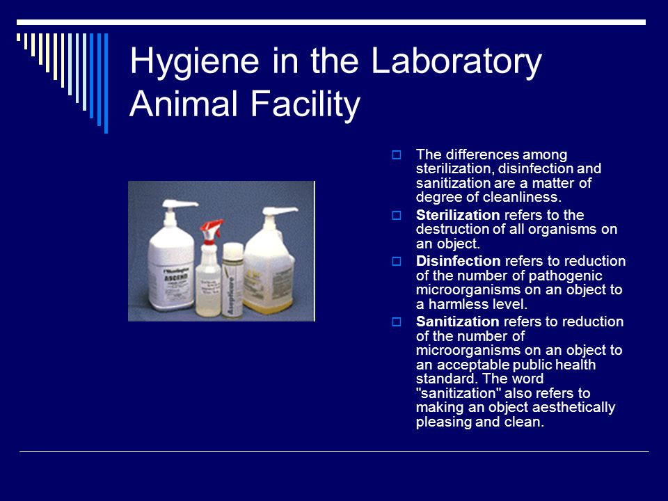 Hygiene in the Laboratory Animal Facility  The differences among sterilization, disinfection and sanitization are a matter of degree of cleanliness.