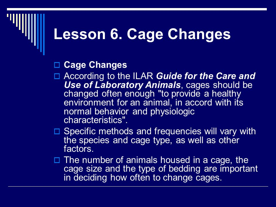Lesson 6. Cage Changes  Cage Changes  According to the ILAR Guide for the Care and Use of Laboratory Animals, cages should be changed often enough