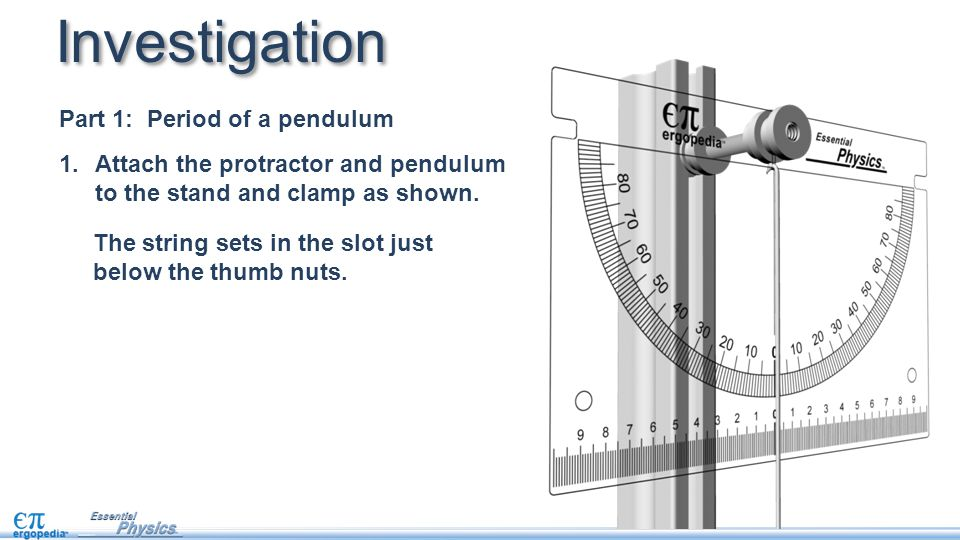 Investigation Part 1: Period of a pendulum 1.Attach the protractor and pendulum to the stand and clamp as shown.