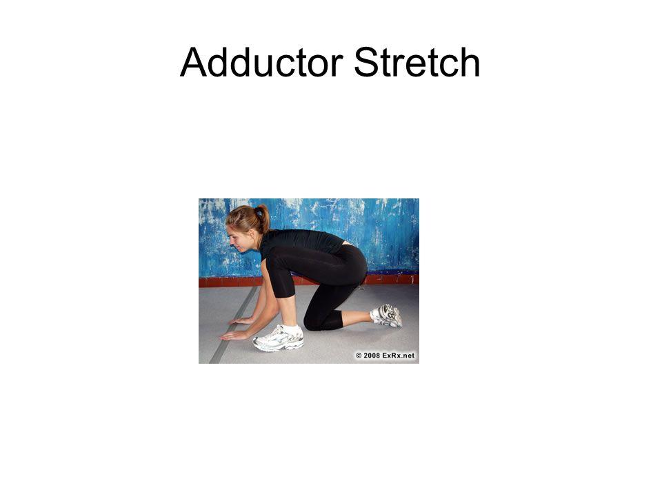 Adductor Stretch