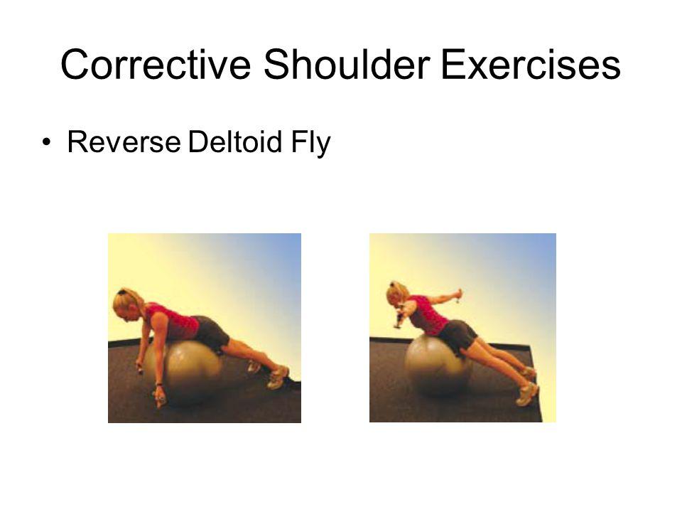 Corrective Shoulder Exercises Reverse Deltoid Fly