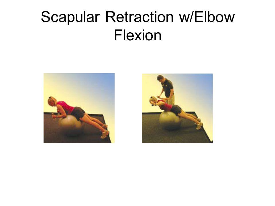 Scapular Retraction w/Elbow Flexion