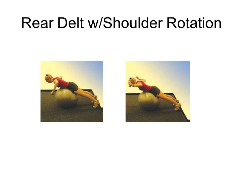 Rear Delt w/Shoulder Rotation
