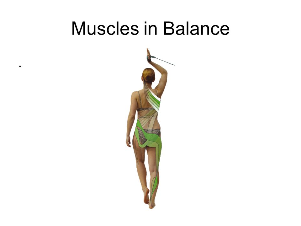 Muscles in Balance.