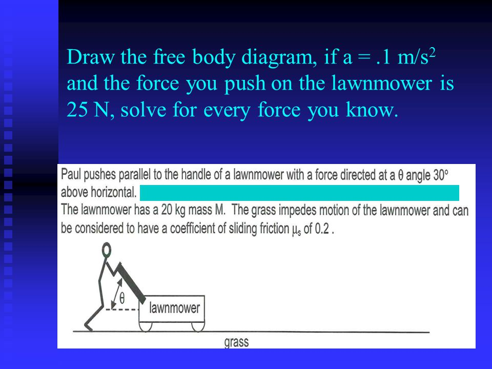 Horse Body Drawing Draw The Free Body Diagram