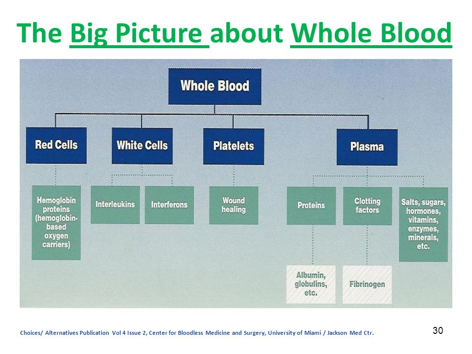 30 The Big Picture about Whole Blood Choices/ Alternatives Publication Vol 4 Issue 2, Center for Bloodless Medicine and Surgery, University of Miami /
