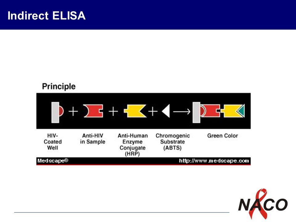 P3 Indirect ELISA
