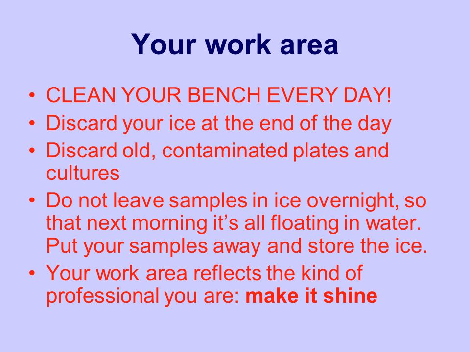 Your work area CLEAN YOUR BENCH EVERY DAY.