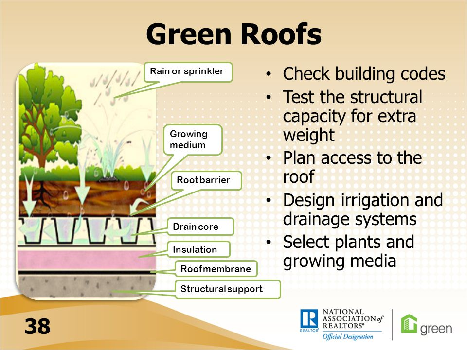 Green Roofs Check building codes Test the structural capacity for extra weight Plan access to the roof Design irrigation and drainage systems Select plants and growing media Rain or sprinkler Growing medium Root barrier Drain core Insulation Roof membrane Structural support 38