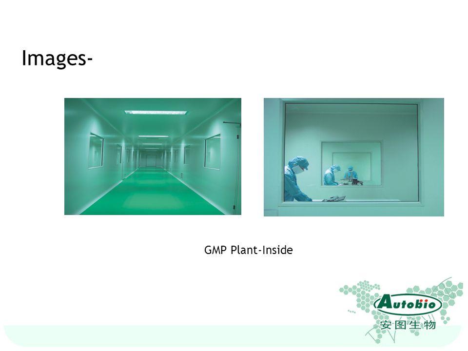 GMP Plant-Inside Images-