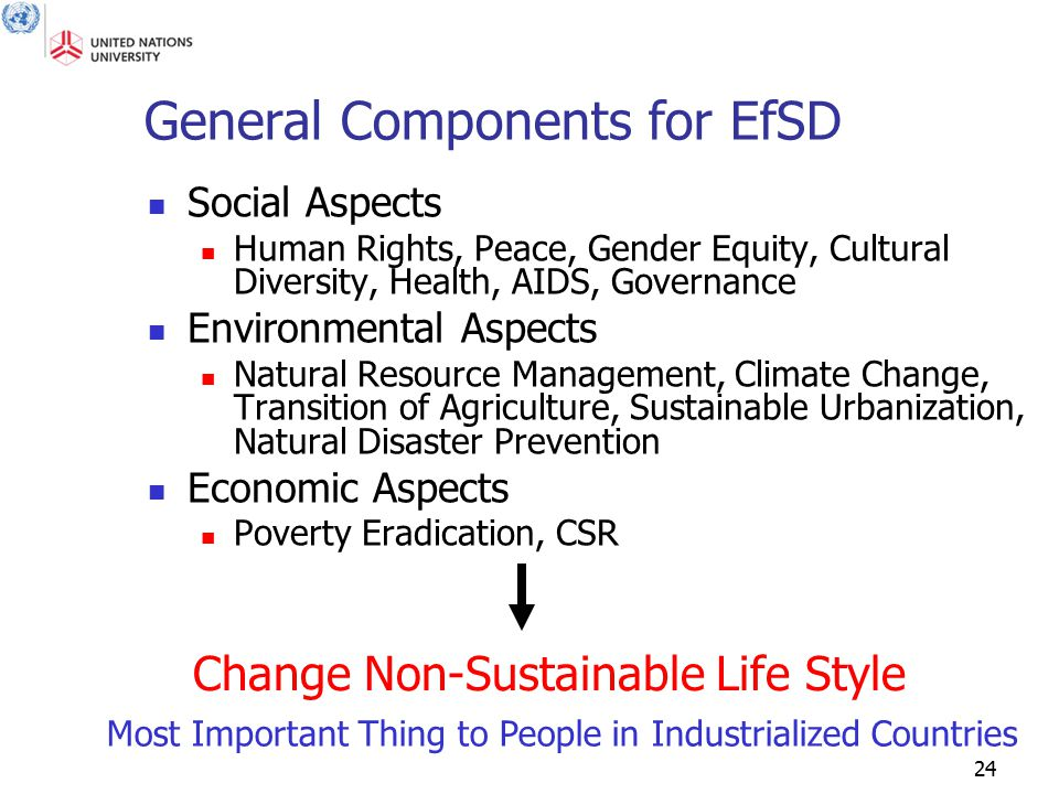 24 General Components for EfSD Social Aspects Human Rights, Peace, Gender Equity, Cultural Diversity, Health, AIDS, Governance Environmental Aspects N