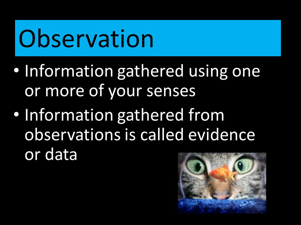 Information gathered using one or more of your senses Information gathered from observations is called evidence or data