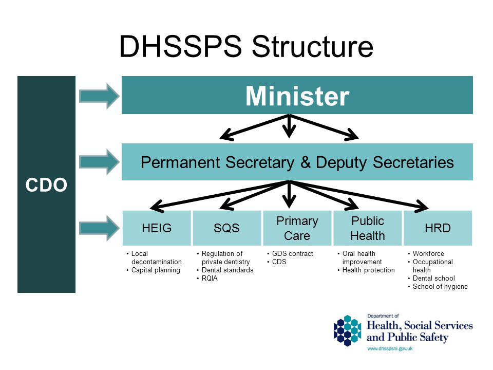 DHSSPS Structure CDO Minister Permanent Secretary & Deputy Secretaries HEIGSQS Primary Care Public Health HRD Local decontamination Capital planning Regulation of private dentistry Dental standards RQIA GDS contract CDS Oral health improvement Health protection Workforce Occupational health Dental school School of hygiene