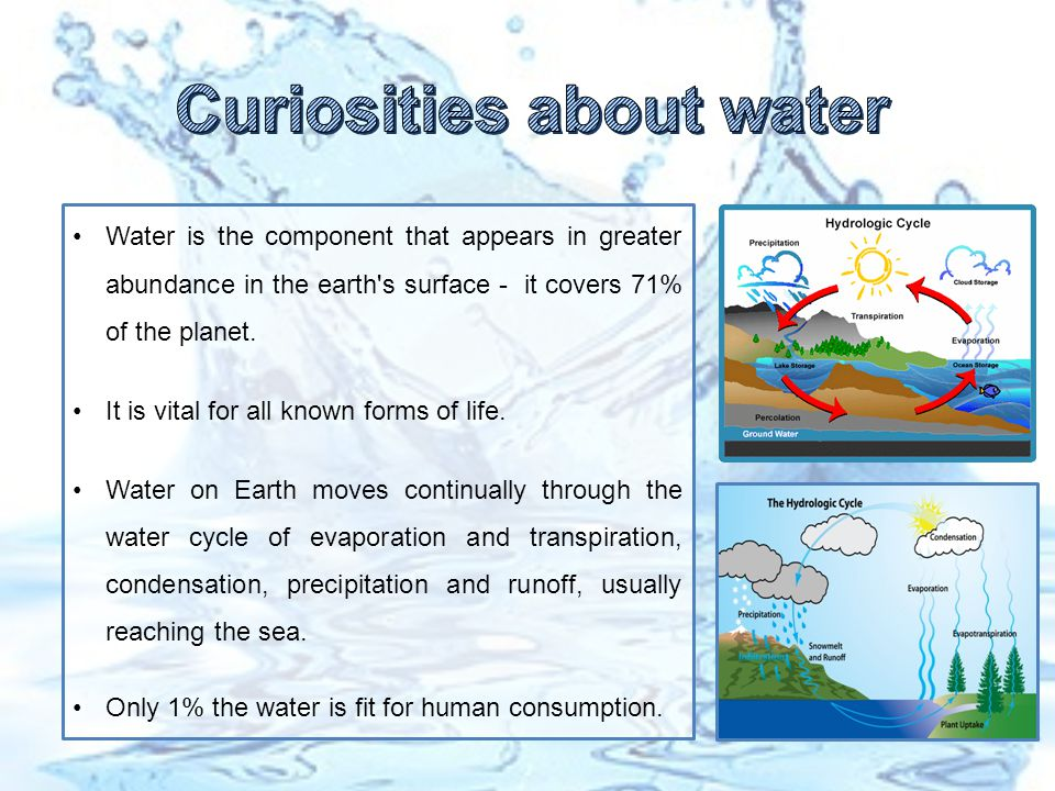 Water is the component that appears in greater abundance in the earth s surface - it covers 71% of the planet.