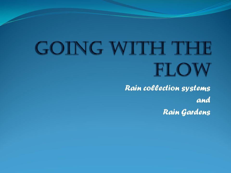 Rain collection systems and Rain Gardens