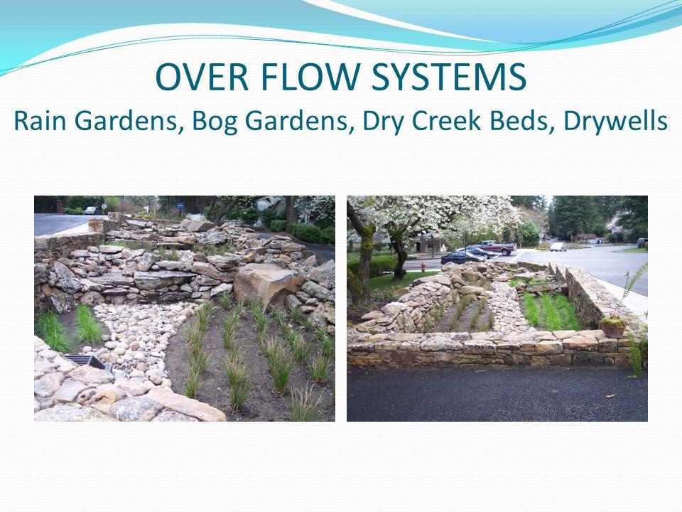 OVER FLOW SYSTEMS Rain Gardens, Bog Gardens, Dry Creek Beds, Drywells