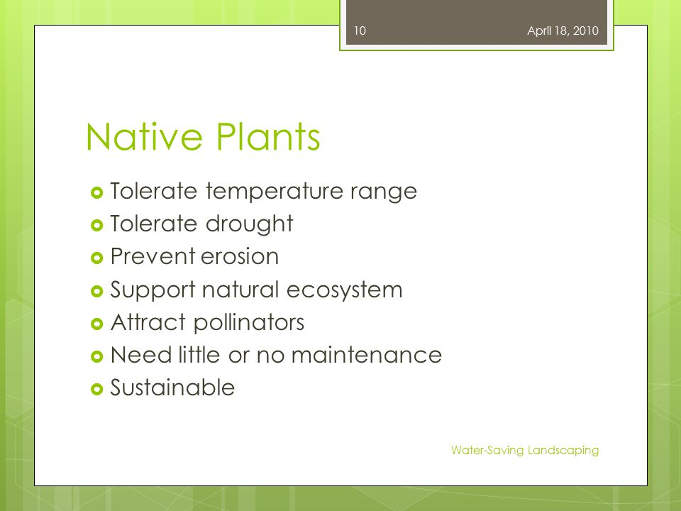 Native Plants  Tolerate temperature range  Tolerate drought  Prevent erosion  Support natural ecosystem  Attract pollinators  Need little or no maintenance  Sustainable April 18, 2010 Water-Saving Landscaping 10