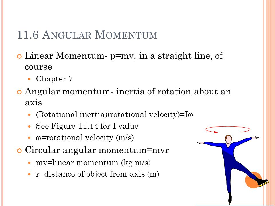 11.6 A NGULAR M OMENTUM Linear Momentum- p=mv, in a straight line, of course Chapter 7 Angular momentum- inertia of rotation about an axis (Rotational inertia)(rotational velocity)=I  See Figure 11.14 for I value  =rotational velocity (m/s) Circular angular momentum=mvr mv=linear momentum (kg m/s) r=distance of object from axis (m)