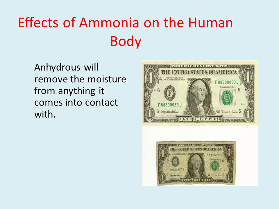 Effects of Ammonia on the Human Body Anhydrous will remove the moisture from anything it comes into contact with.