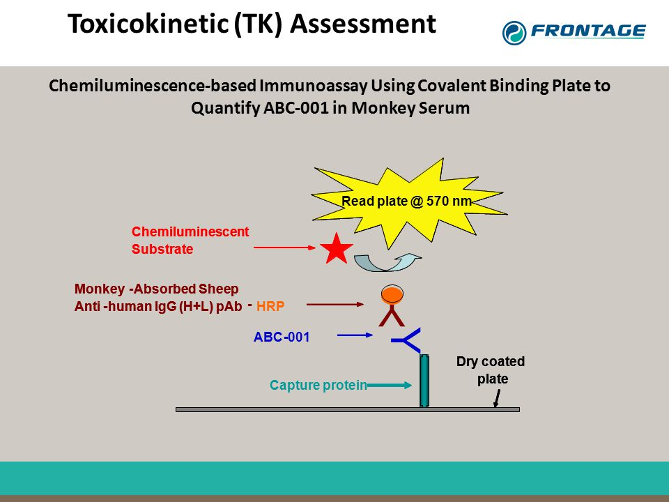 Toxicokinetic (TK) Assessment Capture protein ABC- Chemiluminescent Substrate Read plate @ 570 nm Monkey-Absorbed Sheep Anti-human IgG (H+L) pAb HRP D