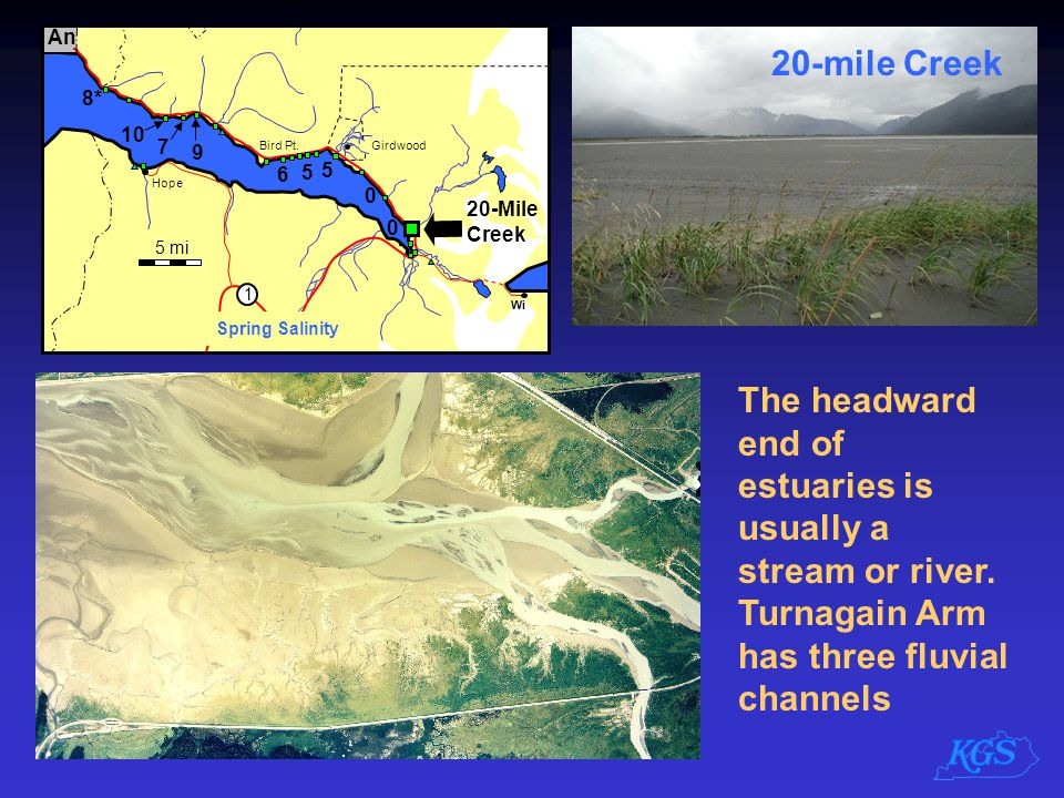 The headward end of estuaries is usually a stream or river. Turnagain Arm has three fluvial channels 20-mile Creek
