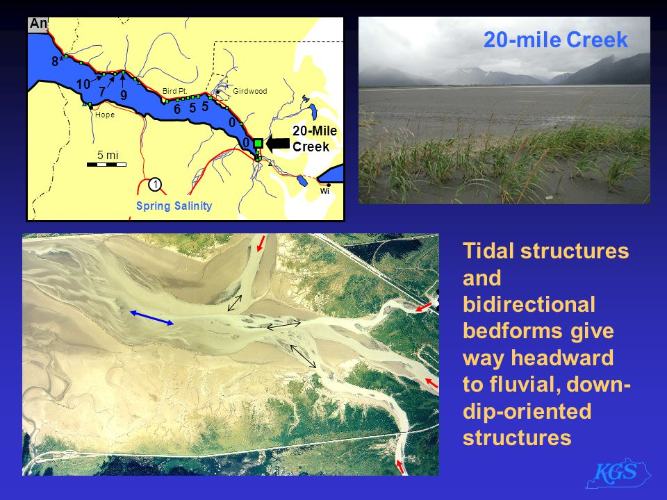 Tidal structures and bidirectional bedforms give way headward to fluvial, down- dip-oriented structures 20-mile Creek
