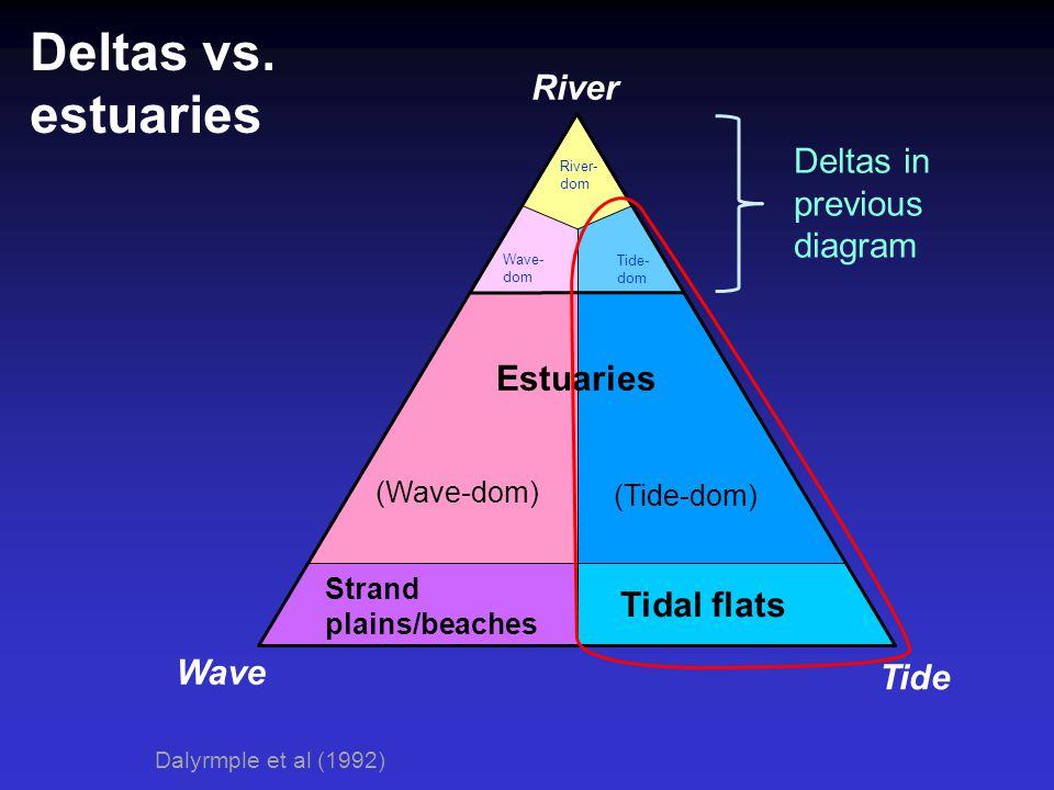 Deltas vs. estuaries River Wave Tide Deltas in previous diagram Estuaries (Wave-dom) (Tide-dom) Tidal flats Strand plains/beaches Dalyrmple et al (199