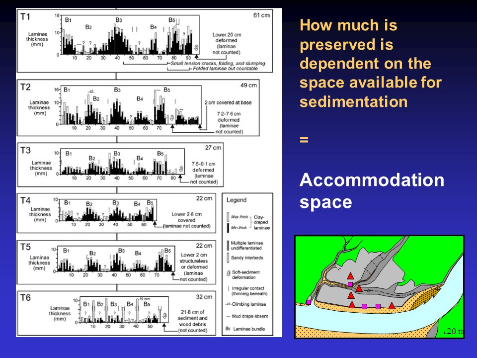 20 m How much is preserved is dependent on the space available for sedimentation = Accommodation space