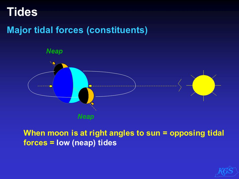  Semidiurnal ( 2 tides each day)  Diurnal ( 1 tide each day)  Mixed ( 1 to 2 tides each day) Tides Major tidal forces (constituents) Principal lunar(1 high, 1 low) P= 12.4 hours Principal solar (1 high, 1 low) P= 12 hours But the world isn't covered by water uniformly.