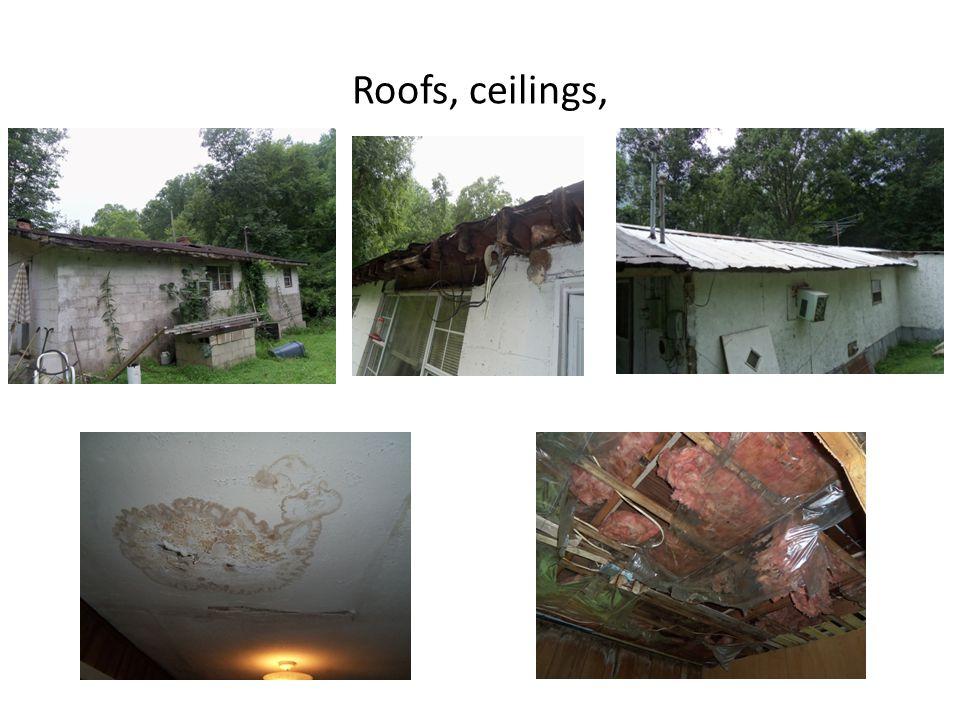 Roofs, ceilings,