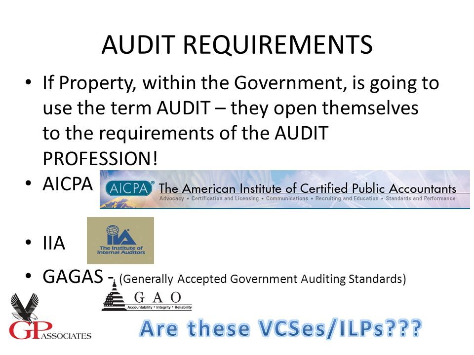 AUDIT REQUIREMENTS If Property, within the Government, is going to use the term AUDIT – they open themselves to the requirements of the AUDIT PROFESSION.