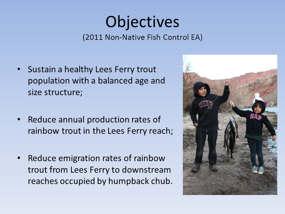 Objectives (2011 Non-Native Fish Control EA) Sustain a healthy Lees Ferry trout population with a balanced age and size structure; Reduce annual production rates of rainbow trout in the Lees Ferry reach; Reduce emigration rates of rainbow trout from Lees Ferry to downstream reaches occupied by humpback chub.