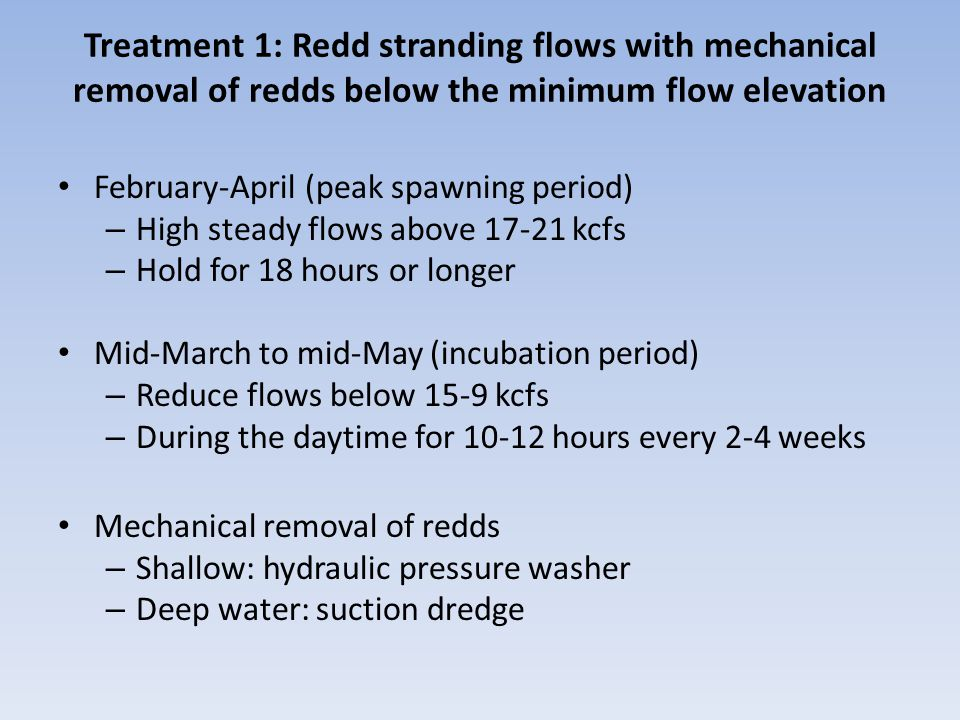Treatment 1: Redd stranding flows with mechanical removal of redds below the minimum flow elevation February-April (peak spawning period) – High steady flows above 17-21 kcfs – Hold for 18 hours or longer Mid-March to mid-May (incubation period) – Reduce flows below 15-9 kcfs – During the daytime for 10-12 hours every 2-4 weeks Mechanical removal of redds – Shallow: hydraulic pressure washer – Deep water: suction dredge