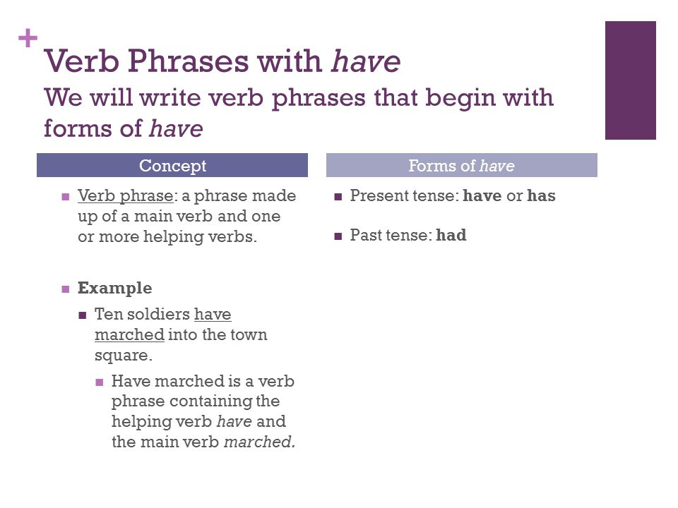 + Verb Phrases with have We will write verb phrases that begin with forms of have Verb phrase: a phrase made up of a main verb and one or more helping verbs.