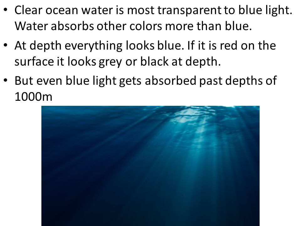 Clear ocean water is most transparent to blue light. Water absorbs other colors more than blue. At depth everything looks blue. If it is red on the su