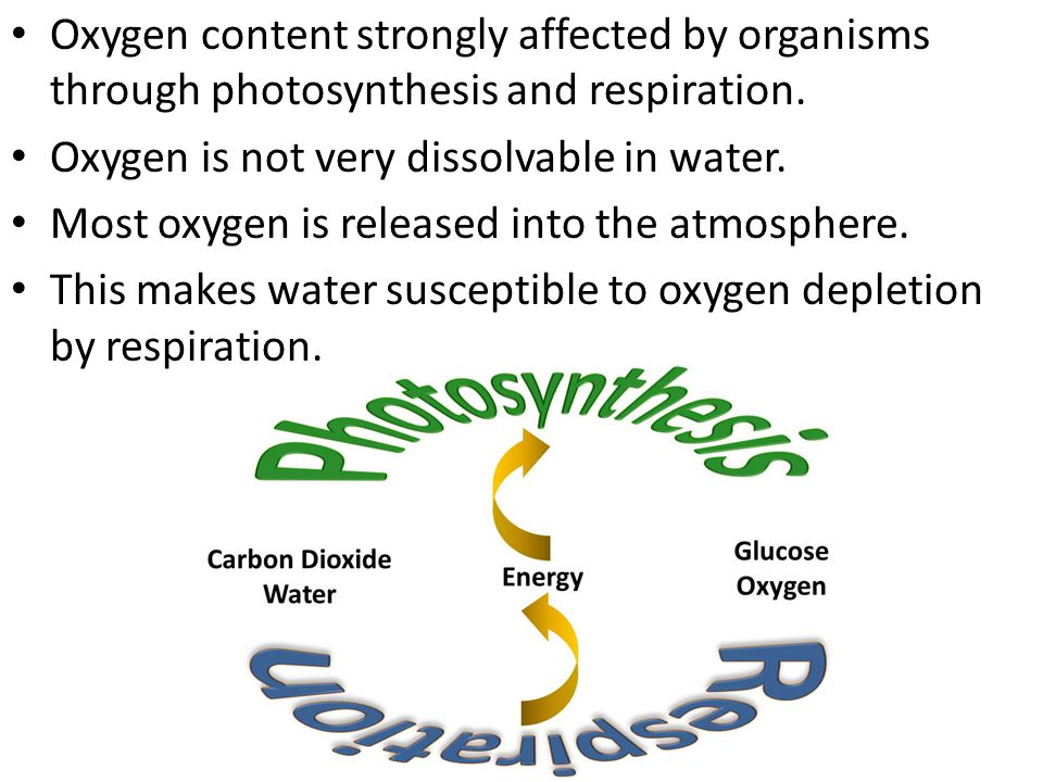 Oxygen content strongly affected by organisms through photosynthesis and respiration. Oxygen is not very dissolvable in water. Most oxygen is released