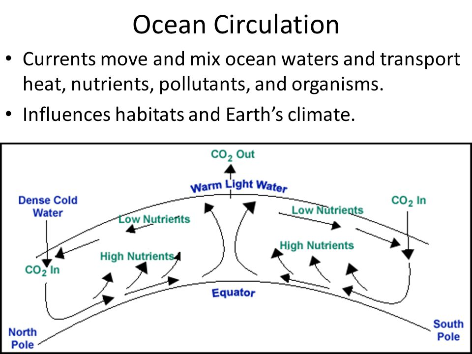 Ocean Circulation Currents move and mix ocean waters and transport heat, nutrients, pollutants, and organisms. Influences habitats and Earth's climate