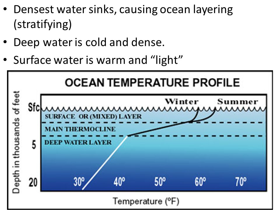 "Densest water sinks, causing ocean layering (stratifying) Deep water is cold and dense. Surface water is warm and ""light"""