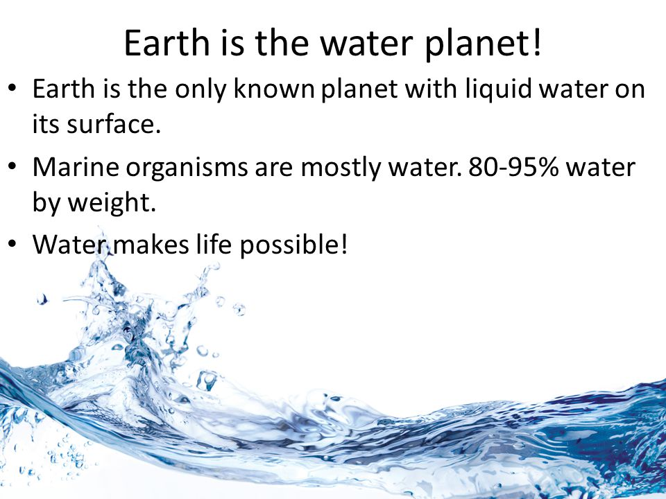 Earth is the water planet! Earth is the only known planet with liquid water on its surface. Marine organisms are mostly water. 80-95% water by weight.