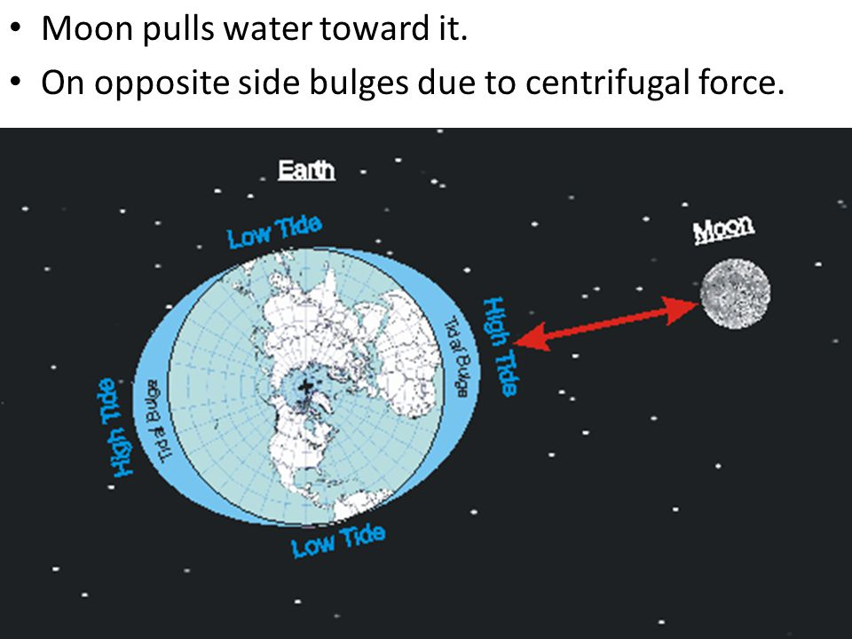 Moon pulls water toward it. On opposite side bulges due to centrifugal force.