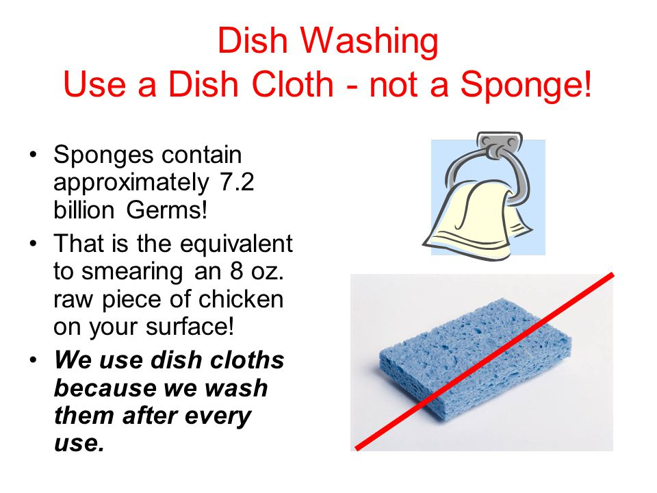 Dish Washing Use a Dish Cloth - not a Sponge. Sponges contain approximately 7.2 billion Germs.