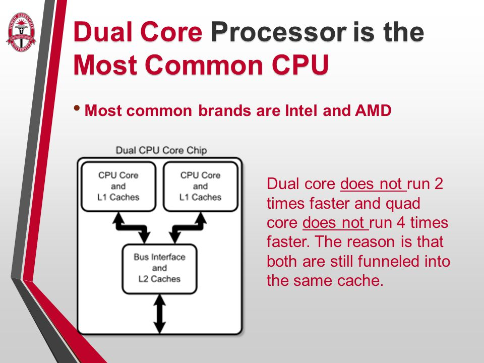Dual Core Processor is the Most Common CPU Most common brands are Intel and AMD Dual core does not run 2 times faster and quad core does not run 4 times faster.