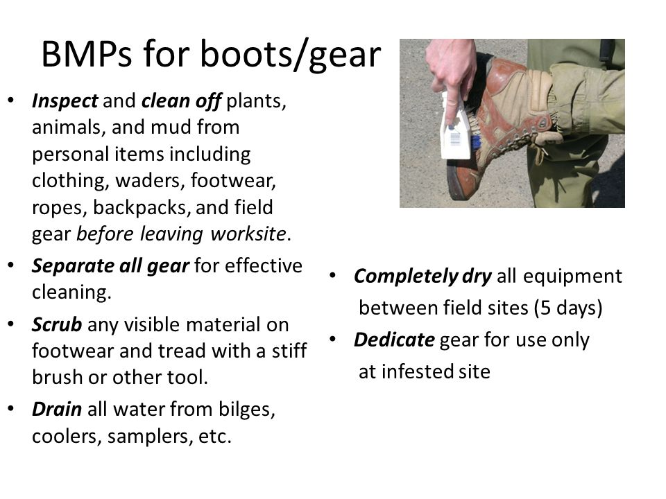 BMPs for boots/gear Inspect and clean off plants, animals, and mud from personal items including clothing, waders, footwear, ropes, backpacks, and field gear before leaving worksite.