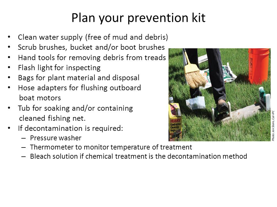 Plan your prevention kit Clean water supply (free of mud and debris) Scrub brushes, bucket and/or boot brushes Hand tools for removing debris from treads Flash light for inspecting Bags for plant material and disposal Hose adapters for flushing outboard boat motors Tub for soaking and/or containing cleaned fishing net.