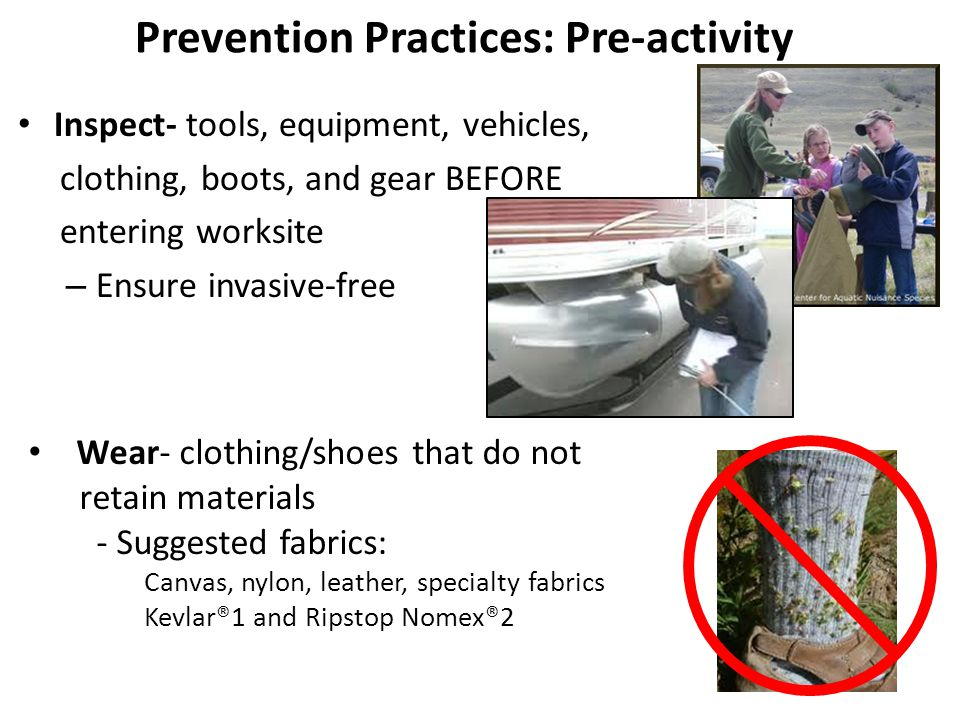 Inspect- tools, equipment, vehicles, clothing, boots, and gear BEFORE entering worksite – Ensure invasive-free Prevention Practices: Pre-activity Wear- clothing/shoes that do not retain materials - Suggested fabrics: Canvas, nylon, leather, specialty fabrics Kevlar®1 and Ripstop Nomex®2