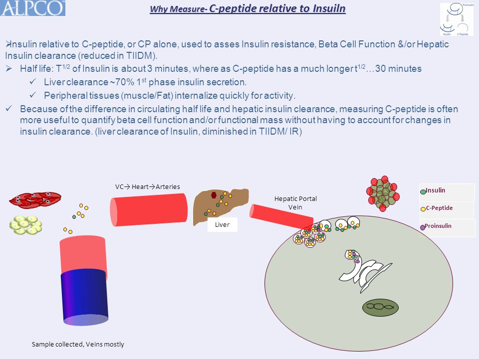 Why Measure- C-peptide relative to Insuiln C-Peptide Insulin Proinsulin  Insulin relative to C-peptide, or CP alone, used to asses Insulin resistance, Beta Cell Function &/or Hepatic Insulin clearance (reduced in TIIDM).
