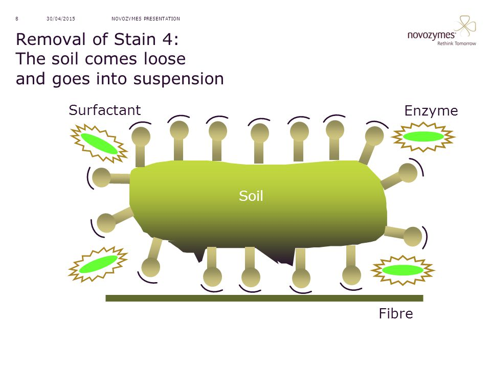 NOVOZYMES PRESENTATION30/04/20158 Removal of Stain 4: The soil comes loose and goes into suspension Soil Fibre Surfactant Enzyme