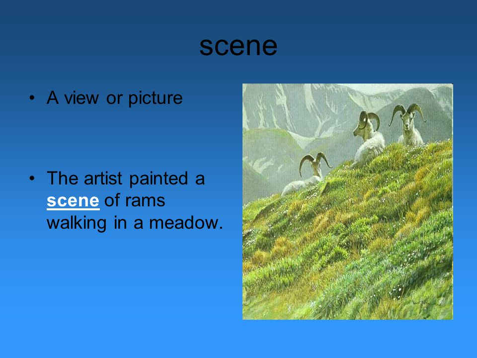 scene A view or picture The artist painted a scene of rams walking in a meadow.
