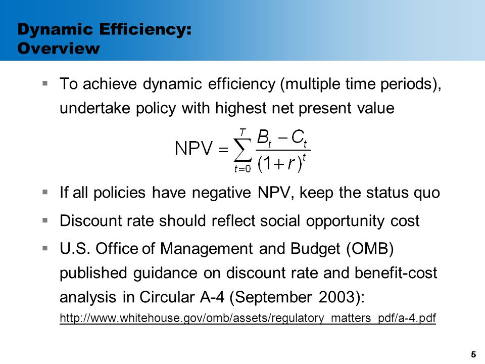 Dynamic Efficiency: Overview  To achieve dynamic efficiency (multiple time periods), undertake policy with highest net present value  If all policie
