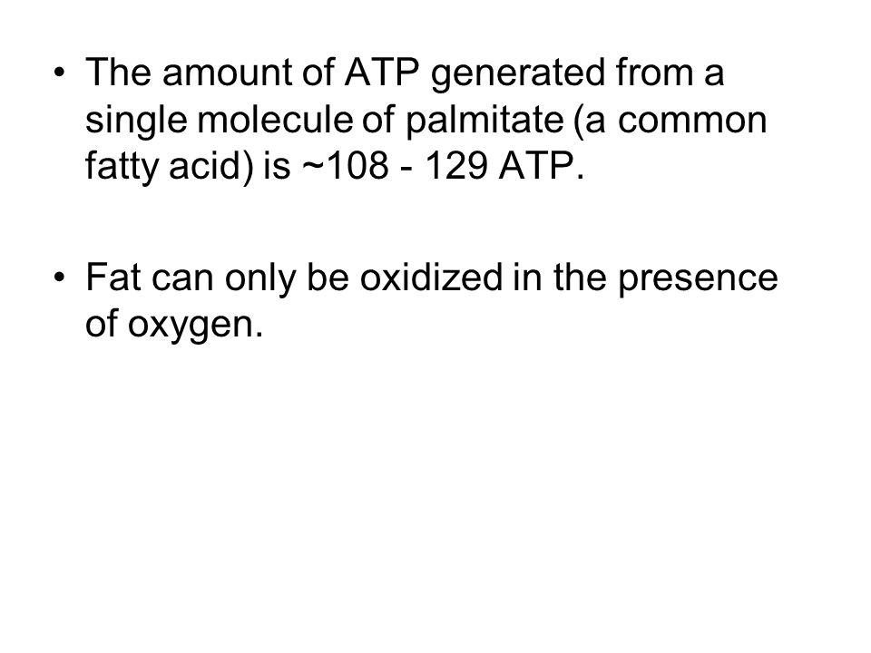 The amount of ATP generated from a single molecule of palmitate (a common fatty acid) is ~108 - 129 ATP.